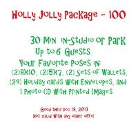 Holly Jolly Mini Session - $100